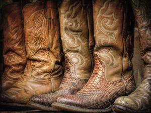 Cowboy Boots by Don Paulson