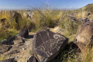 New Mexico, Three Rivers Petroglyph Site. Petroglyph Etching on Rock by Don Paulson