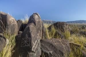 New Mexico, Three Rivers Petroglyph Site. Petroglyph on Rocks by Don Paulson