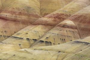 Painted Hills Unit 4 by Don Paulson