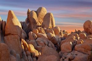 Usa, California, Joshua Tree National Park by Don Paulson Photography