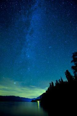 Usa, Washington State, Olympic National Park, Lake Quinault under Night Sky by Don Paulson Photography