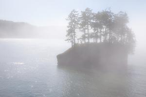 Usa, Washington State, Salt Creek County Park, Tongue Point by Don Paulson Photography