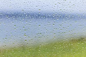 Raindrops on Glass 2 by Don Paulson