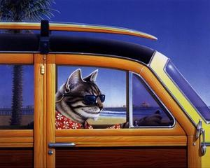 Kahuna Kat by Don Roth