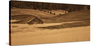 Brown Barn in the Blonde Gra by Don Schwartz