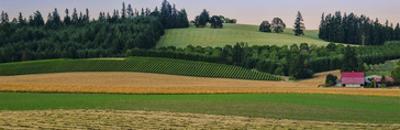 Schwartz - Country Meadows by Don Schwartz