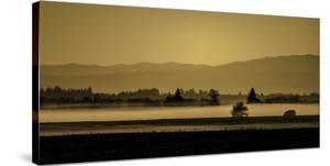 Schwartz - Soft Blanket of Fog by Don Schwartz