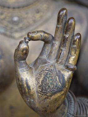 Close-Up of the Hand of Ganga, Kathmandu Valley, Nepal by Don Smith