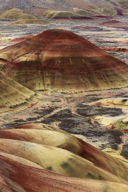 Overlook Trail, Painted Hills by Don Smith