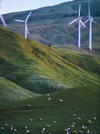 Te Apiti Wind Farm, Palmerston North, Manawatu, North Island, New Zealand, Pacific by Don Smith