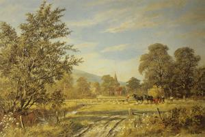 Harvesting the Glebe by Don Vaughan