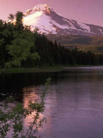 Mt. Hood &Trillium Lake, OR