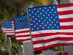 Us Flags Attached to a Fence in Key West, Florida, United States of America, North America by Donald Nausbaum