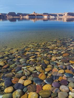 Ancient River Rock from the Colorado River by Donald Paulson