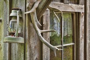 Antlers And Lantern by Donald Paulson