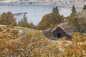 Barn And Columbia River by Donald Paulson