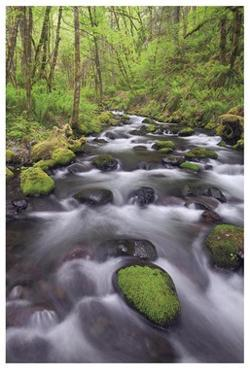 Columbia River Gorge II by Donald Paulson
