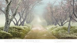 Blossom Path by Donald Satterlee