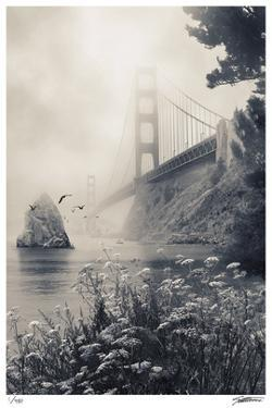 Golden Gate North by Donald Satterlee
