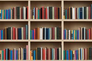 Books on a Wooden Shelfs. by donatas1205