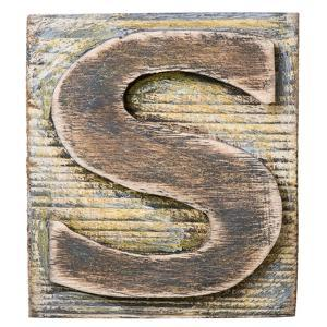 Wooden Alphabet Block, Letter S by donatas1205