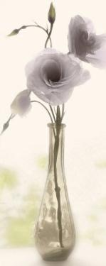 Charming Lisianthus by Donna Geissler