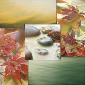 River Rocks I by Donna Geissler