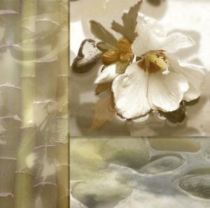 Zen Elements III by Donna Geissler