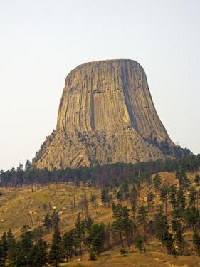 Devils Tower National Monument in Wyoming, Usa by Donna O'Meara