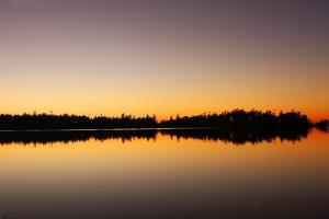 Reflections of Trees on Cranberry Lake in Deception Pass State Park by Donna O'Meara
