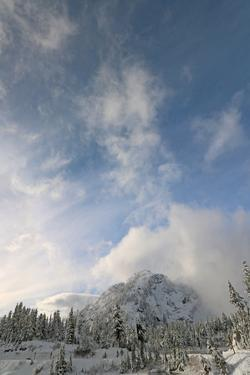 Scenic View of Mount Baker Volcano Snoqualmie National Forest by Donna O'Meara