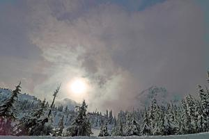 Snow Covered Pine Trees in Mount Baker Volcano Snoqualmie National Forest by Donna O'Meara
