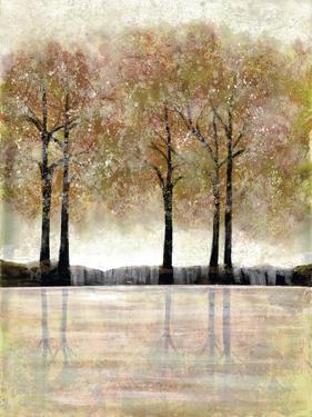 Serene Forest by Doris Charest
