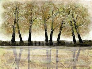 Spring Forest by Doris Charest