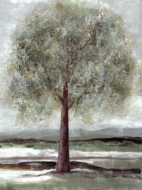 Twilight of Spring 1 by Doris Charest