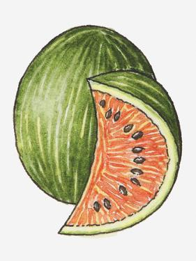 Illustration of a Slice of Watermelon and a Whole Watermelon by Dorling Kindersley