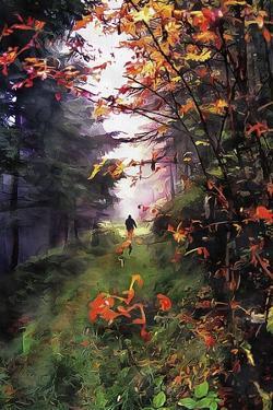 An Autumn Walk by Dorothy Berry-Lound