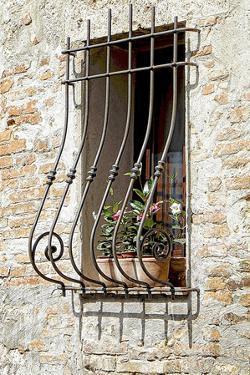 Ornate Window Grill Cetona by Dorothy Berry-Lound