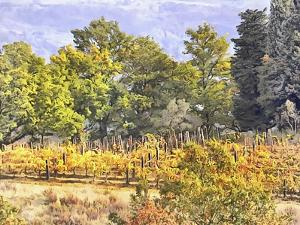 Tuscan Countryside In Autumn by Dorothy Berry-Lound