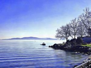 View Across Lago Trasimeno by Dorothy Berry-Lound