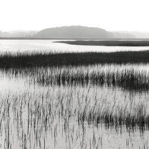 Nut Island, Salt Marsh by Dorothy Kerper Monnelly
