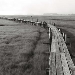 The Boardwalk, Early by Dorothy Kerper Monnelly