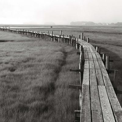 The Boardwalk, Early