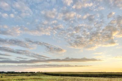 Iowa Landscape by dosecreative