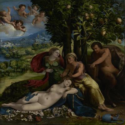 Mythological Scene, c.1524 by Dosso Dossi