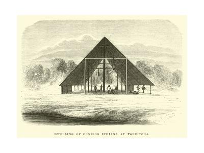 Dwelling of Conibos Indians at Paruitcha