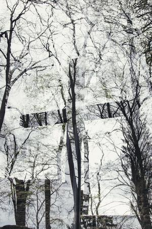 https://imgc.allpostersimages.com/img/posters/double-exposure-of-teutoburg-forest-and-and-the-huenenkapelle-on-the-toensberg-in-oerlinghausen_u-L-Q1EXKSQ0.jpg?artPerspective=n