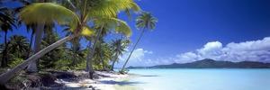 0130 Tropical Paradise by Doug Cavanah