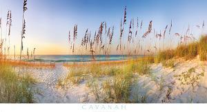 Along the Strand by Doug Cavanah